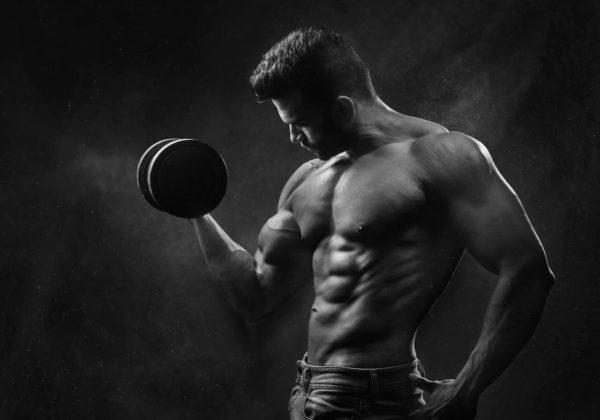 Build Muscular Mass
