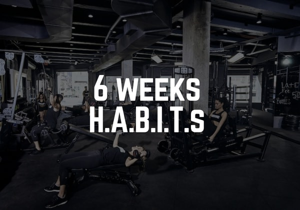 Duration: 6 Weeks